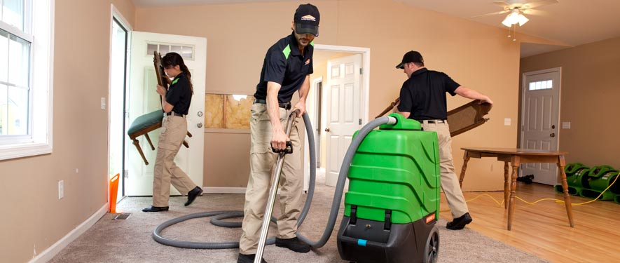Auburn, WA cleaning services